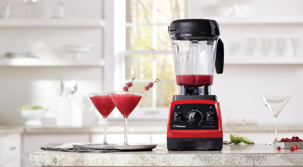 Vitamix Pro300 blender | the Blender