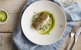 Ovnbakt torsk med fennikelpuré og blomkålris